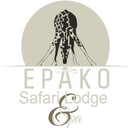 &  Spa  Safari Lodge